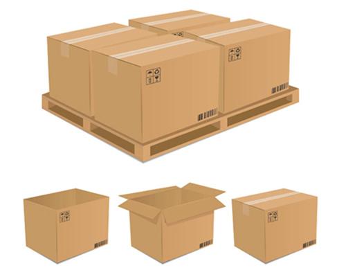 Packaging carton 1